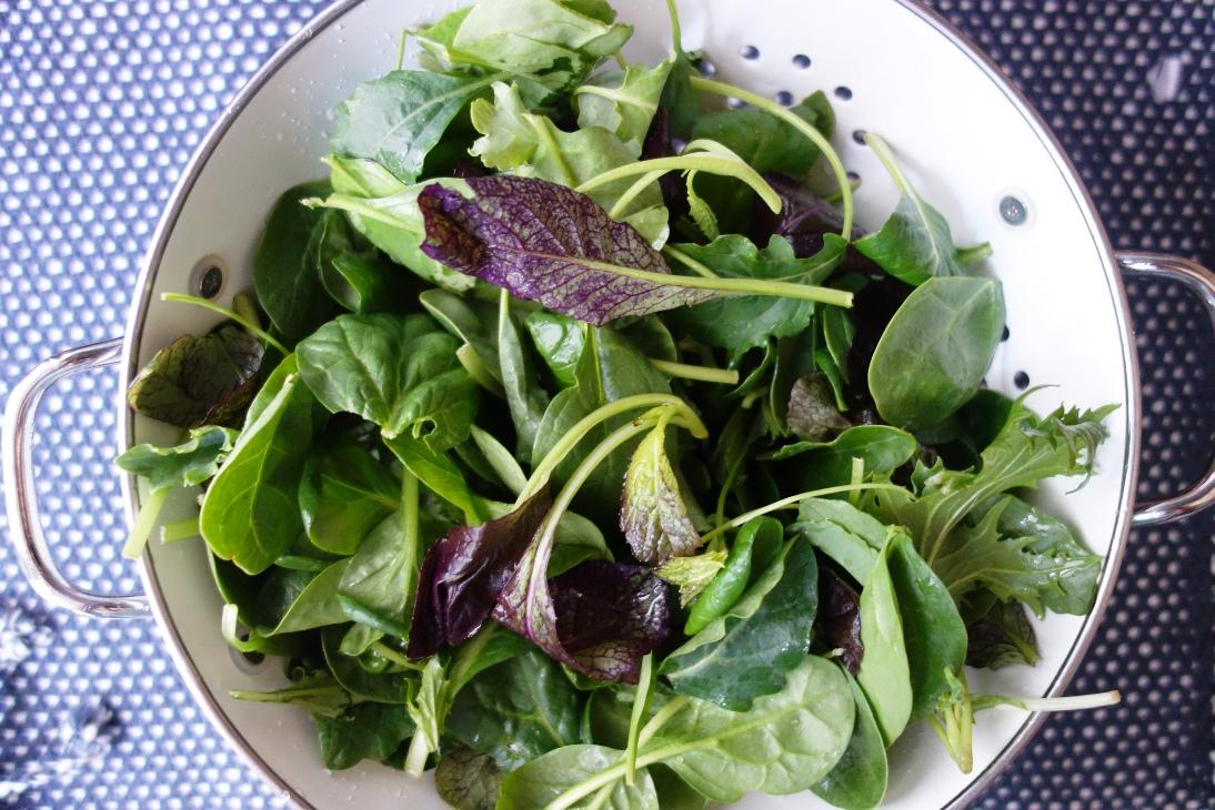 Wild herb salad plain